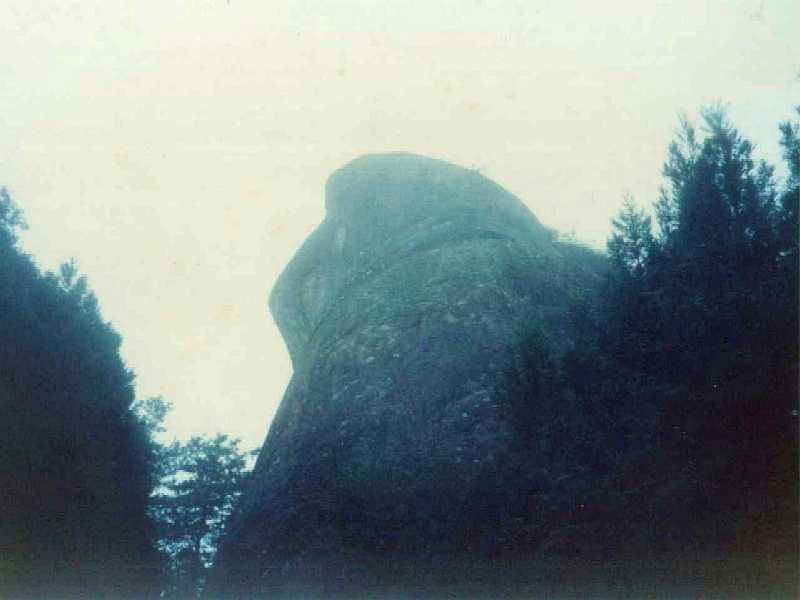 Alishan Stone Monkey.jpg