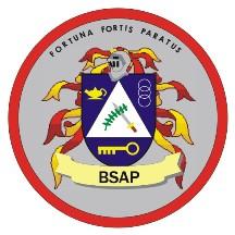 Basic Strategic Arts Program