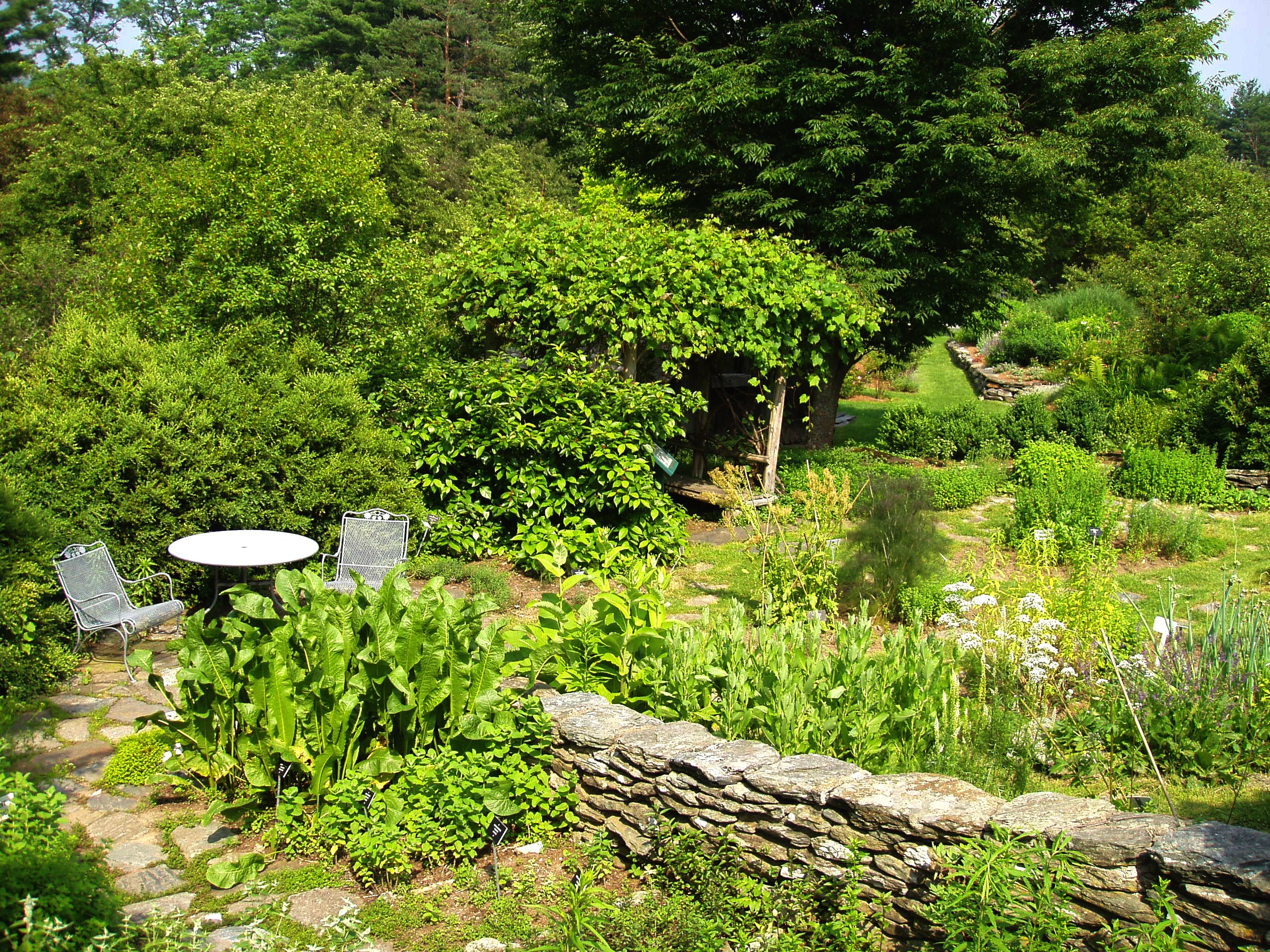 Description berkshire botanical garden herb garden jpg