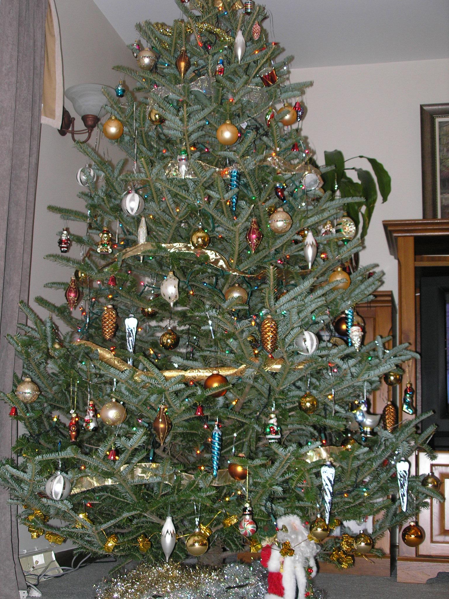 filechristmas tree ddimajpg wikimedia commons