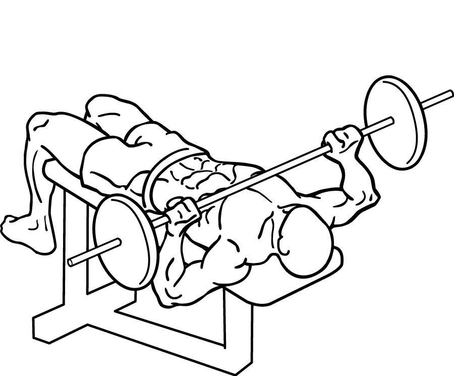 「筋トレ」の画像検索結果
