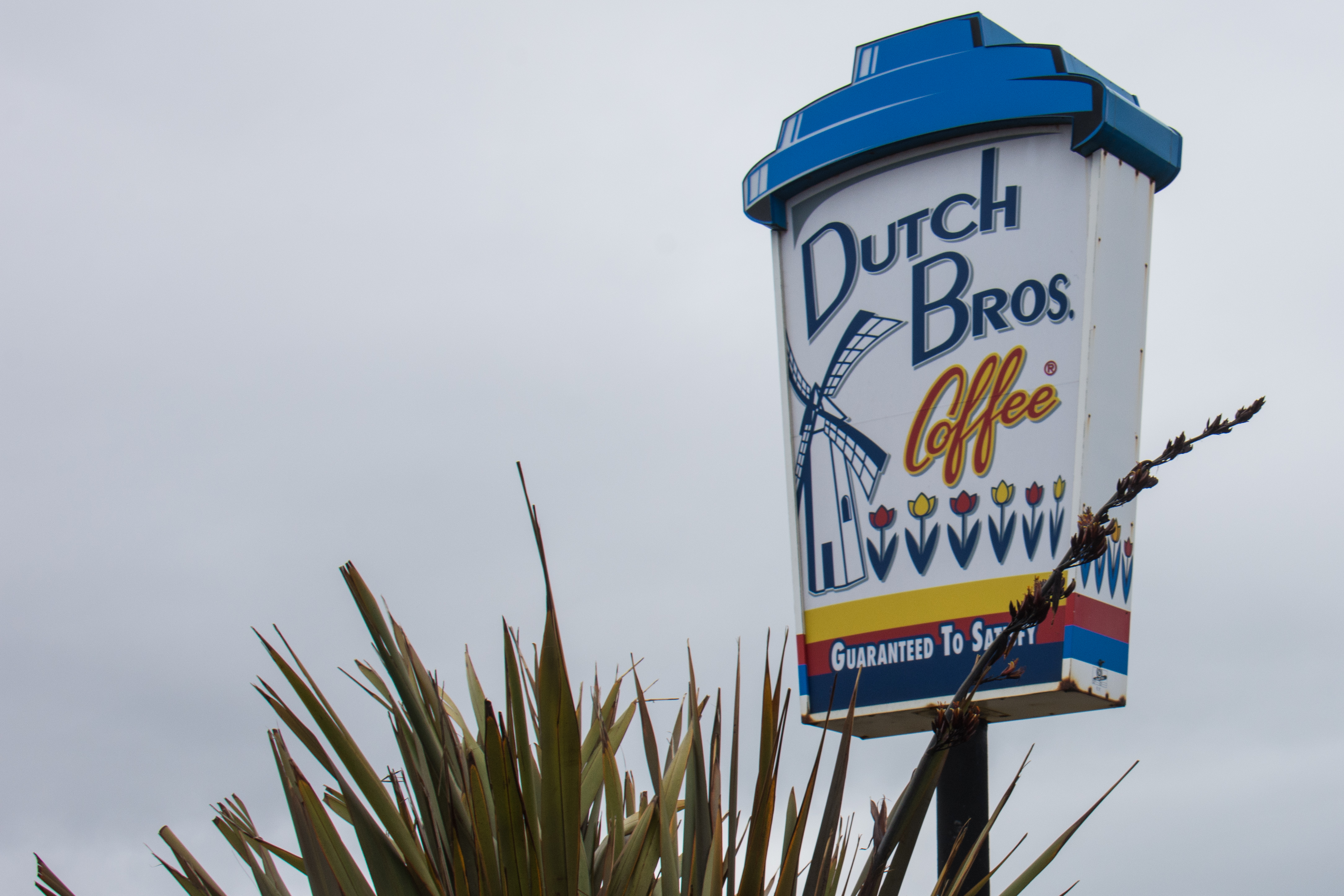 Dutch Bros. Coffee - Wikipedia on baskin-robbins location map, dunkin' donuts location map, carl's jr. location map, burger king location map, krispy kreme location map, baja fresh location map, cold stone creamery location map, el pollo loco location map, dairy queen location map, outback steakhouse location map, wendy's location map, jack in the box location map, del taco location map,