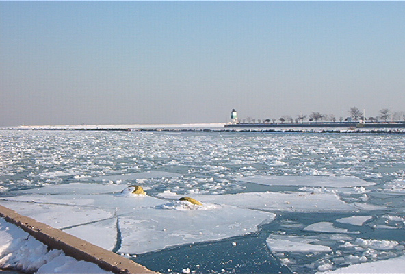 Fichier:Frozen Lake Michigan.jpg