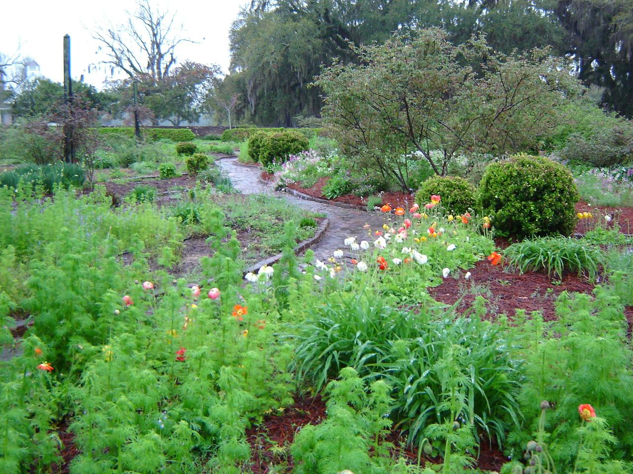 Boone Hall Plantation Gardens Hours Garden Ftempo