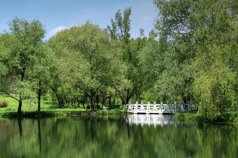 Image result for grădina botanică chișinău