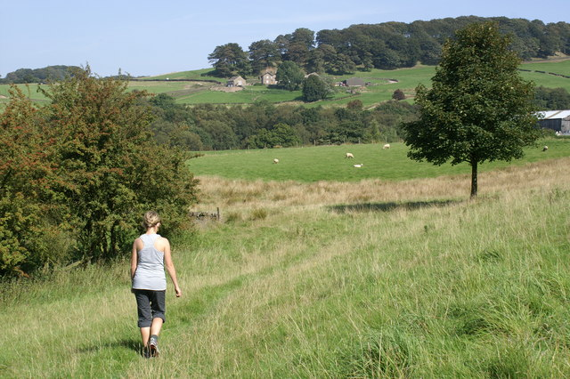 Gritstone Trail near Harrop Brook - geograph.org.uk - 236954