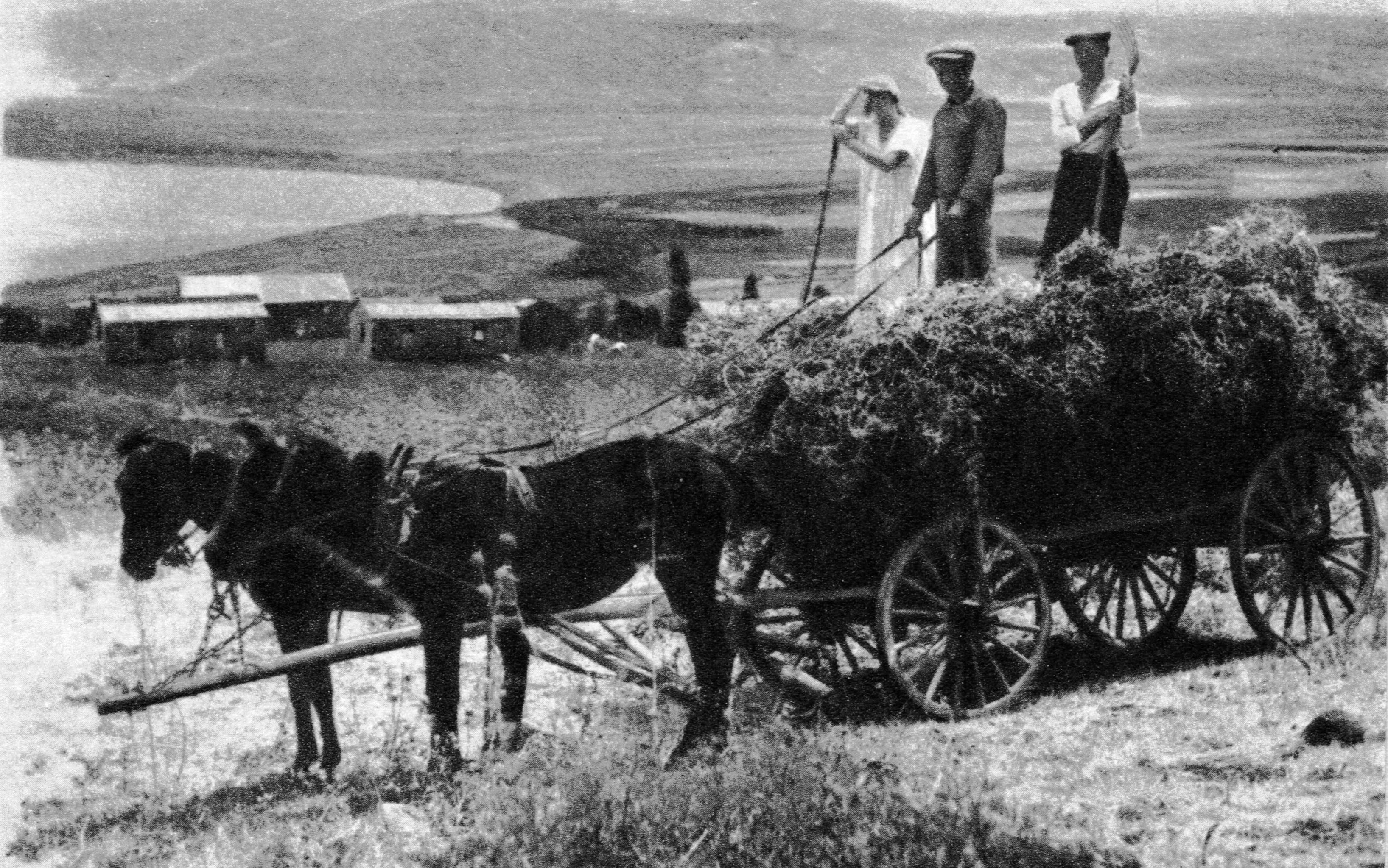קובץ har kinneret 1920 1930 jpg ויקיפדיה