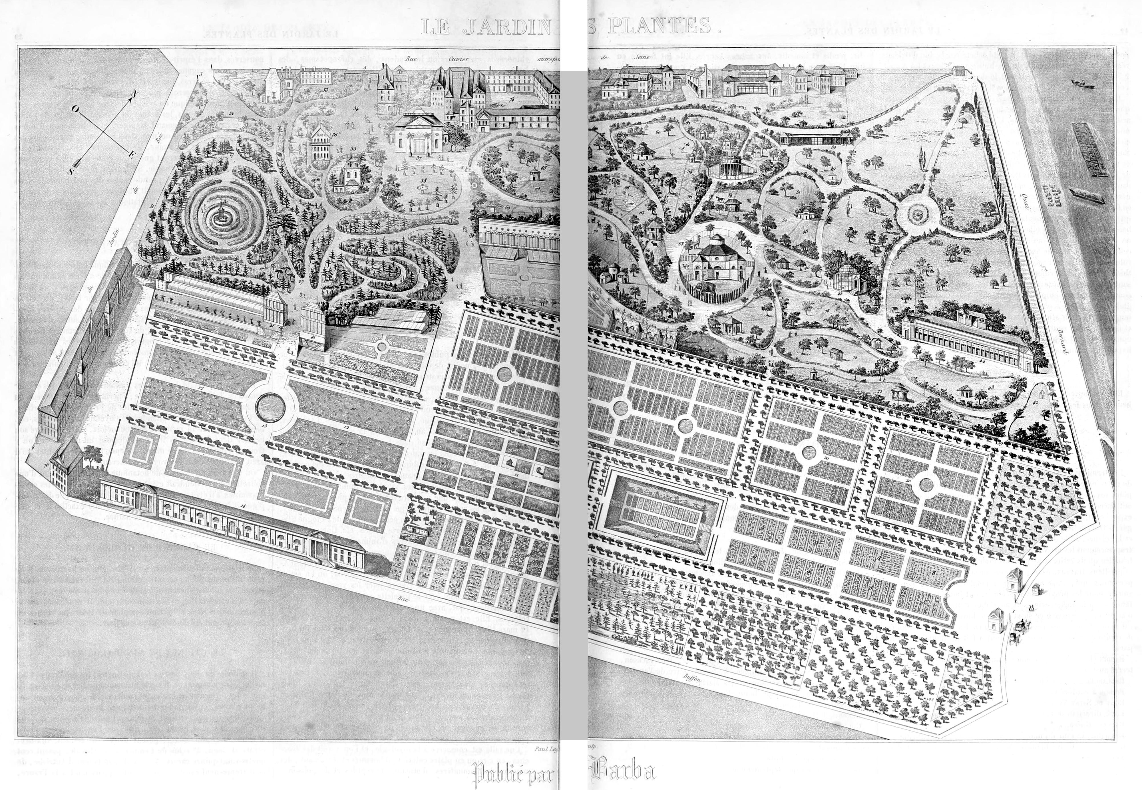 File Jardin des plantes Paris 1851 Wikimedia mons