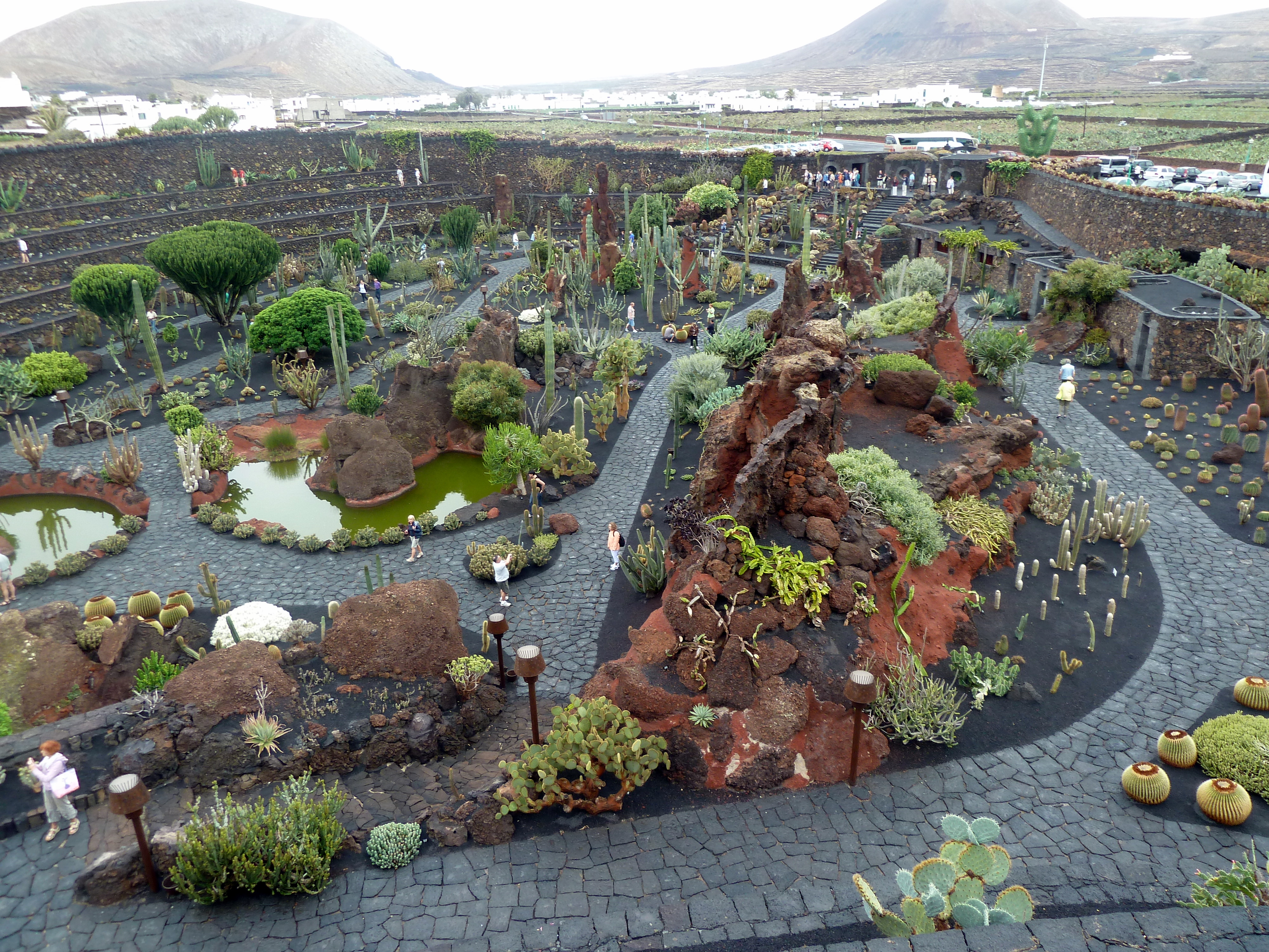 file lanzarote jardin de cactus 4 wikimedia commons. Black Bedroom Furniture Sets. Home Design Ideas