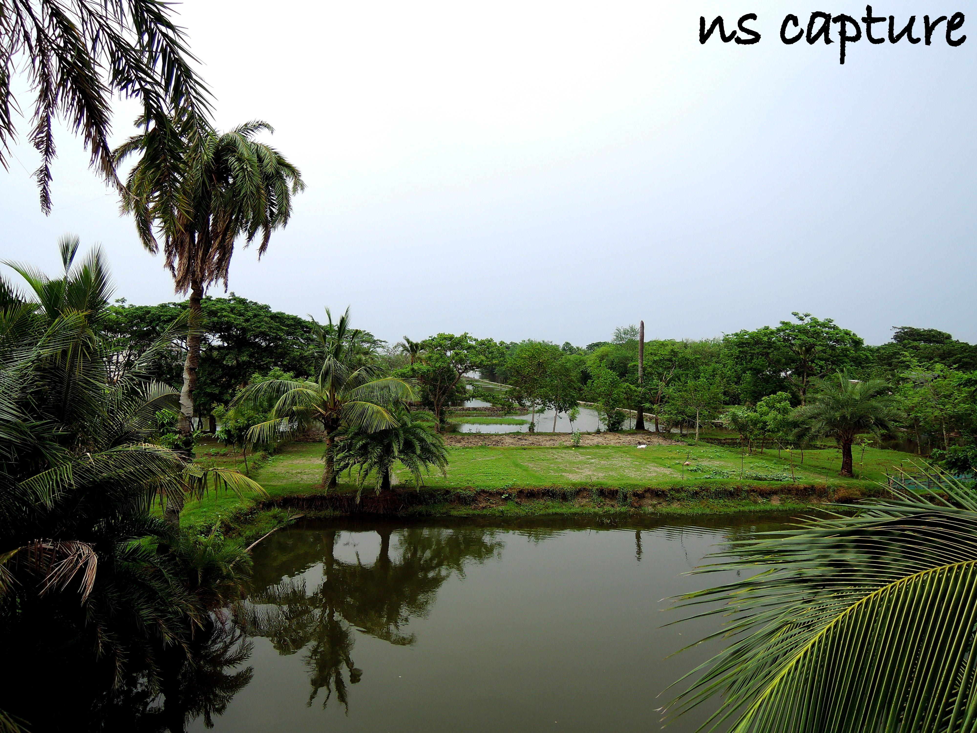 Natural Beauty Of Bangladesh Wikipedia