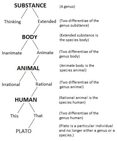 summary the rational life aristotle Aristotle's function argument  (aristotle thought that all life has soul)  we can talk about the rational 'part' of the soul having two parts as well.