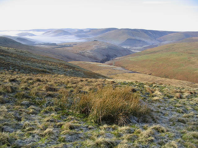 File:Rough grazing on Pike Fell - geograph.org.uk - 328339.jpg