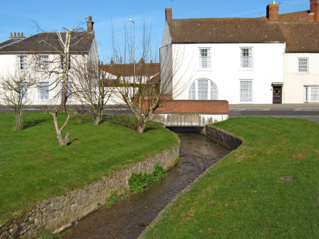 Stream in North Petherton - geograph.org.uk - 1218057