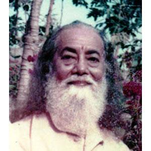 Hariharananda Giri Indian Yogi