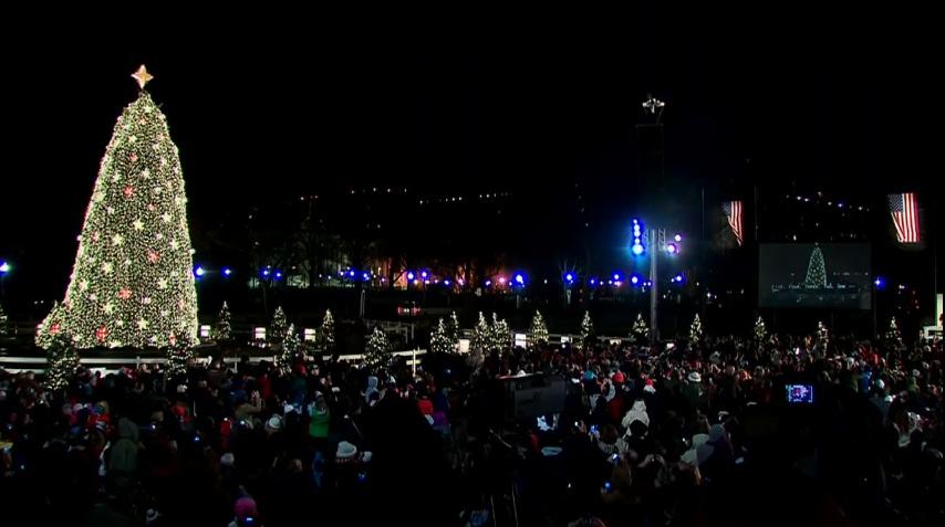 National Christmas Tree Lighting Lottery