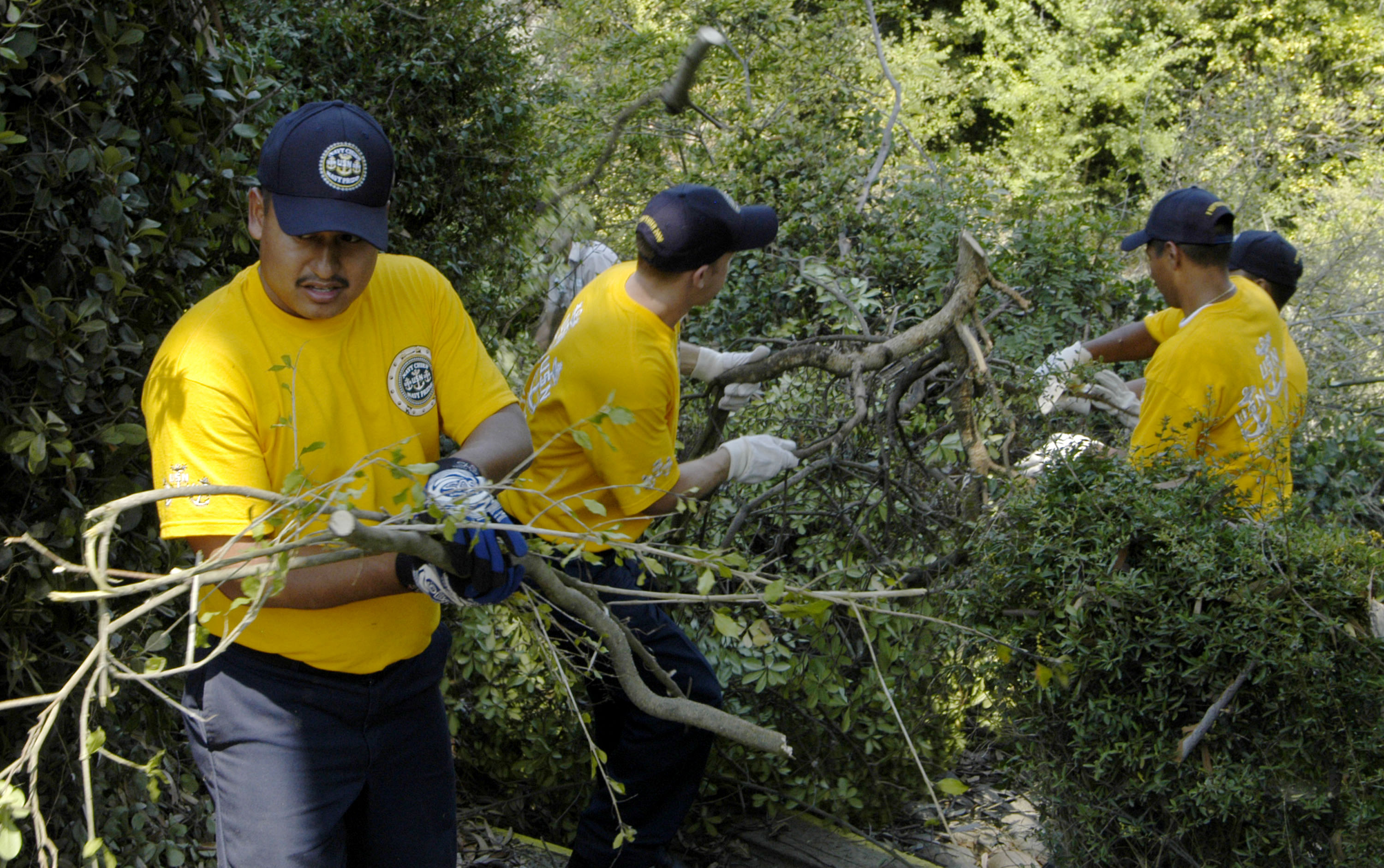 US Navy 060907-N-6597H-182 Chiefs and chief selectees from the San Diego area help clear out old tree branches and shrubbery from the Marston House Museum and Garden as part of their community service projects for Chief Petty O.jpg