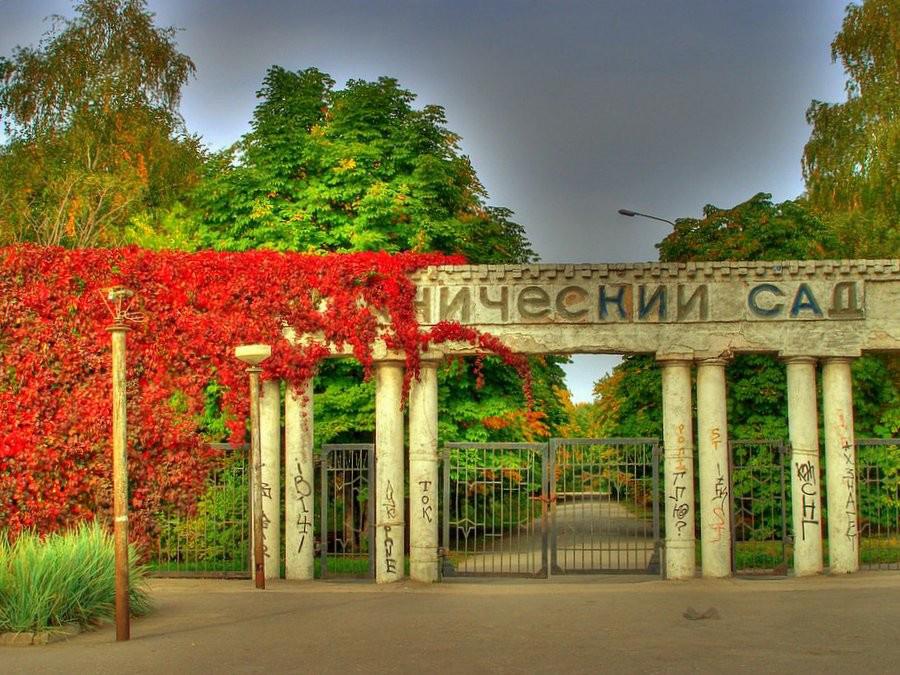 Ботанический сад Википедия