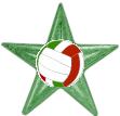 Volleyball Barnstar (Italian).png