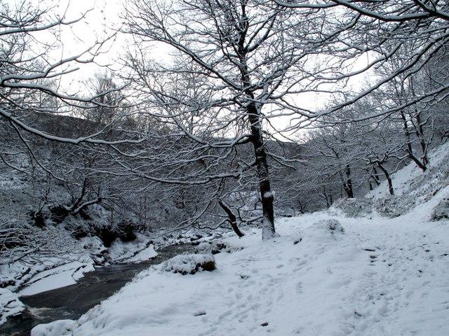 File:Winter wonderland - geograph.org.uk - 676586.jpg ...
