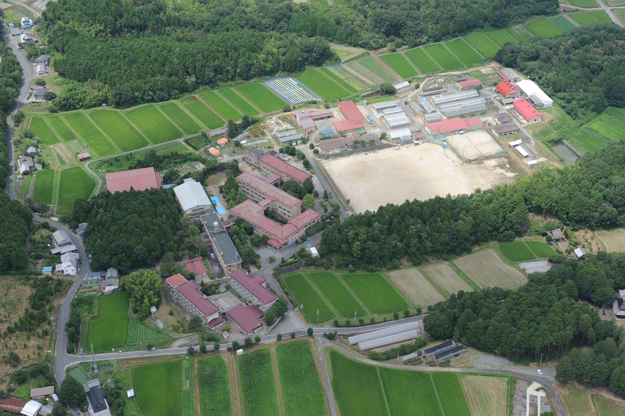 京都 農芸 高校