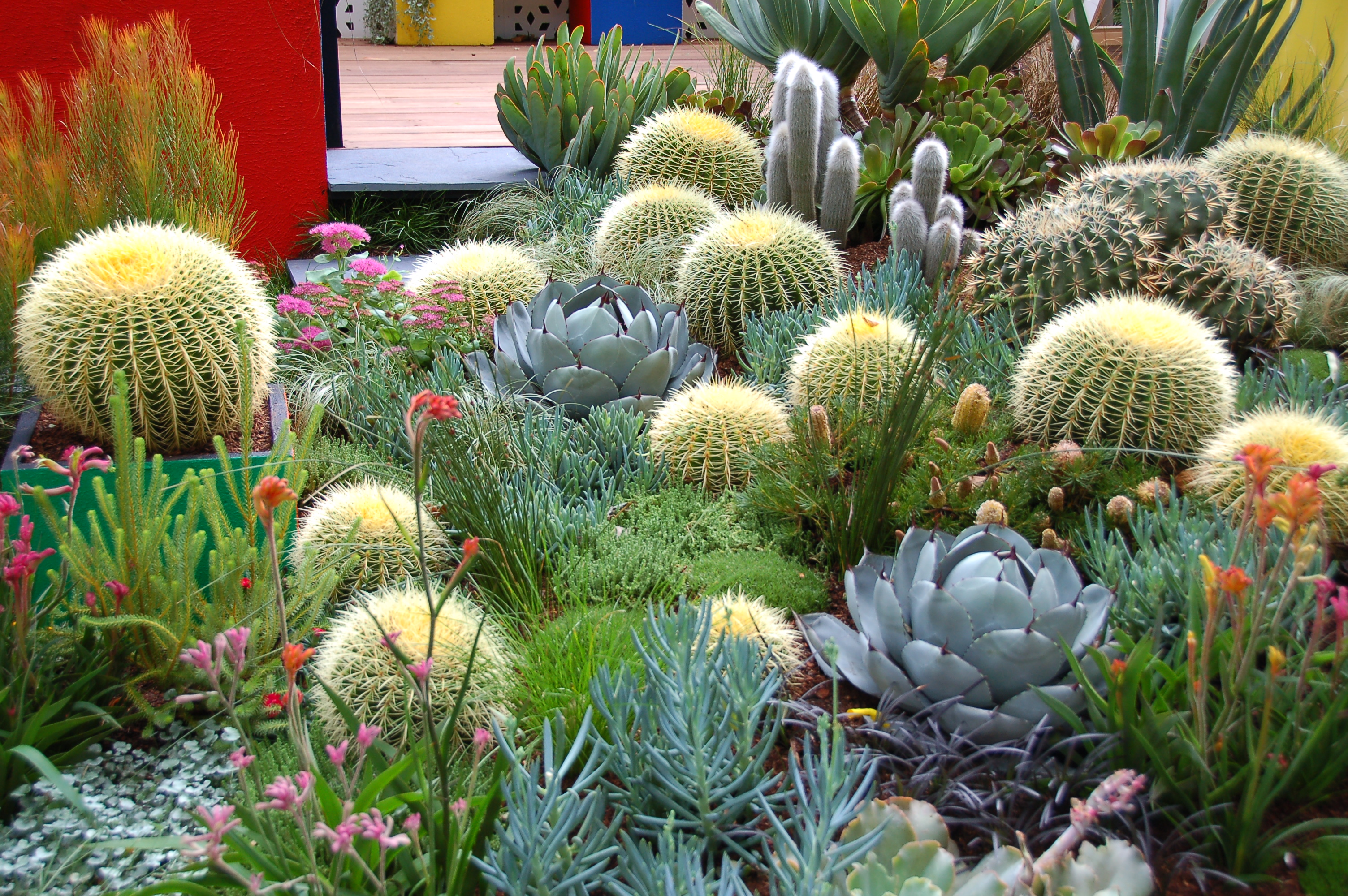 file:2013 melbourne international flower and garden show (8584069621