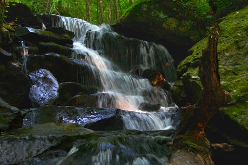 mountains waterfalls forest usa - photo #19