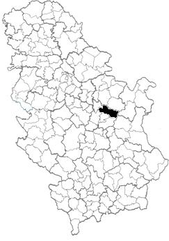despotovac mapa srbije Opština Despotovac   Wikipedia despotovac mapa srbije
