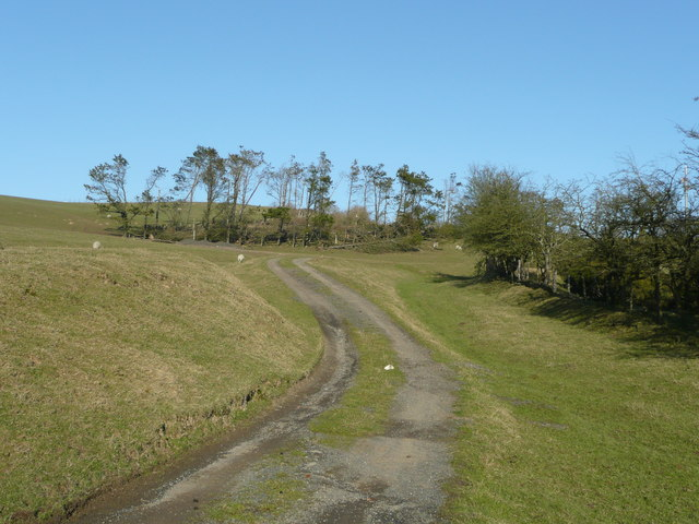 Bridleway into the Radnor Forest - geograph.org.uk - 695921