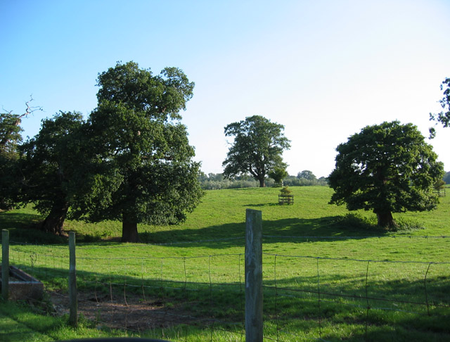 Combermere Park - geograph.org.uk - 234830