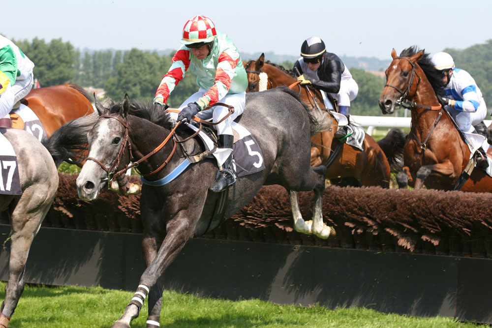 horse racing commentary