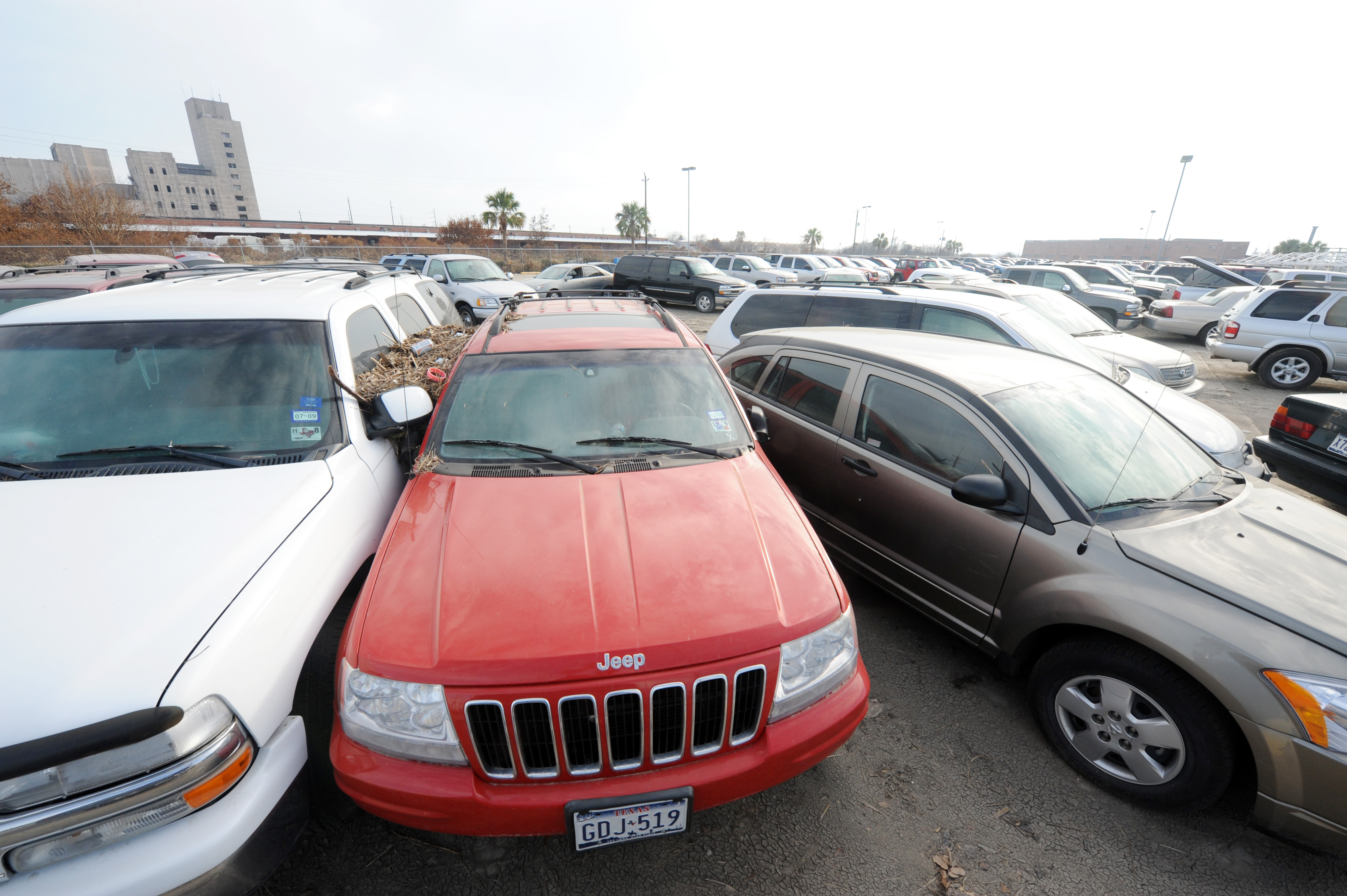 Car Damaged In Employee Parking Lot
