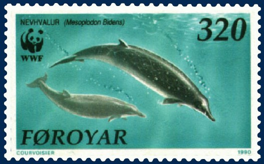 The average litter size of a Sowerby's beaked whale is 1