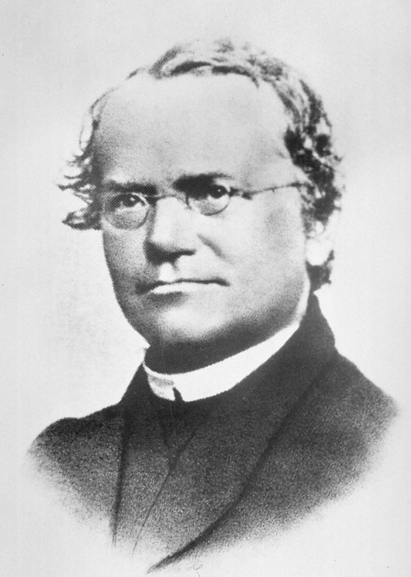 Gregor Mendel Wikiquote