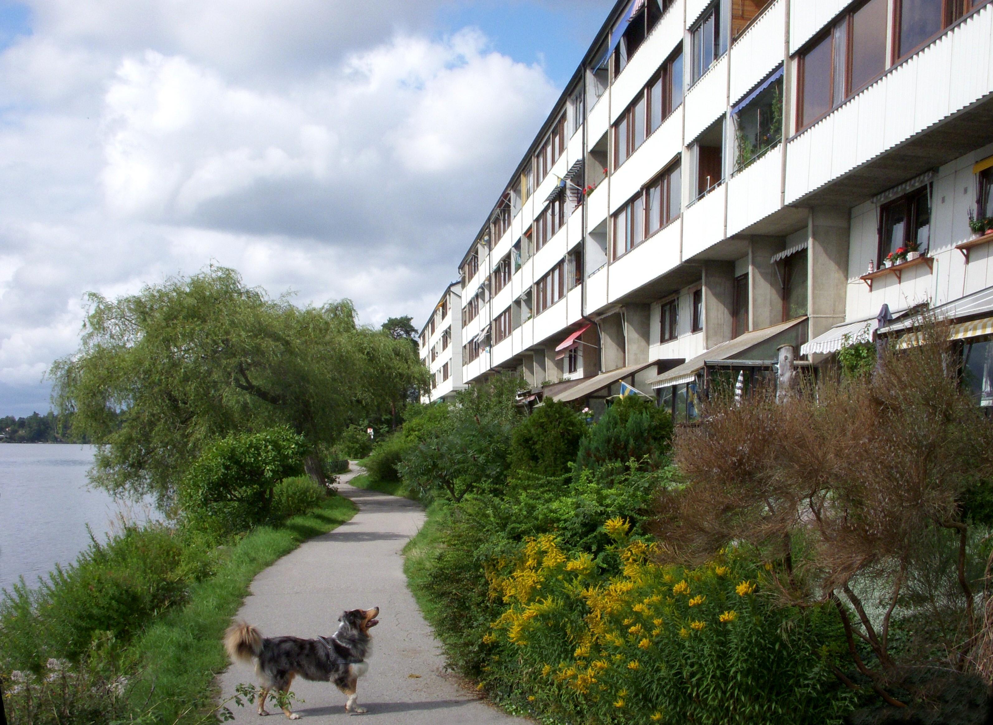 H%C3%A4sselby_Strandliden_2010.jpg