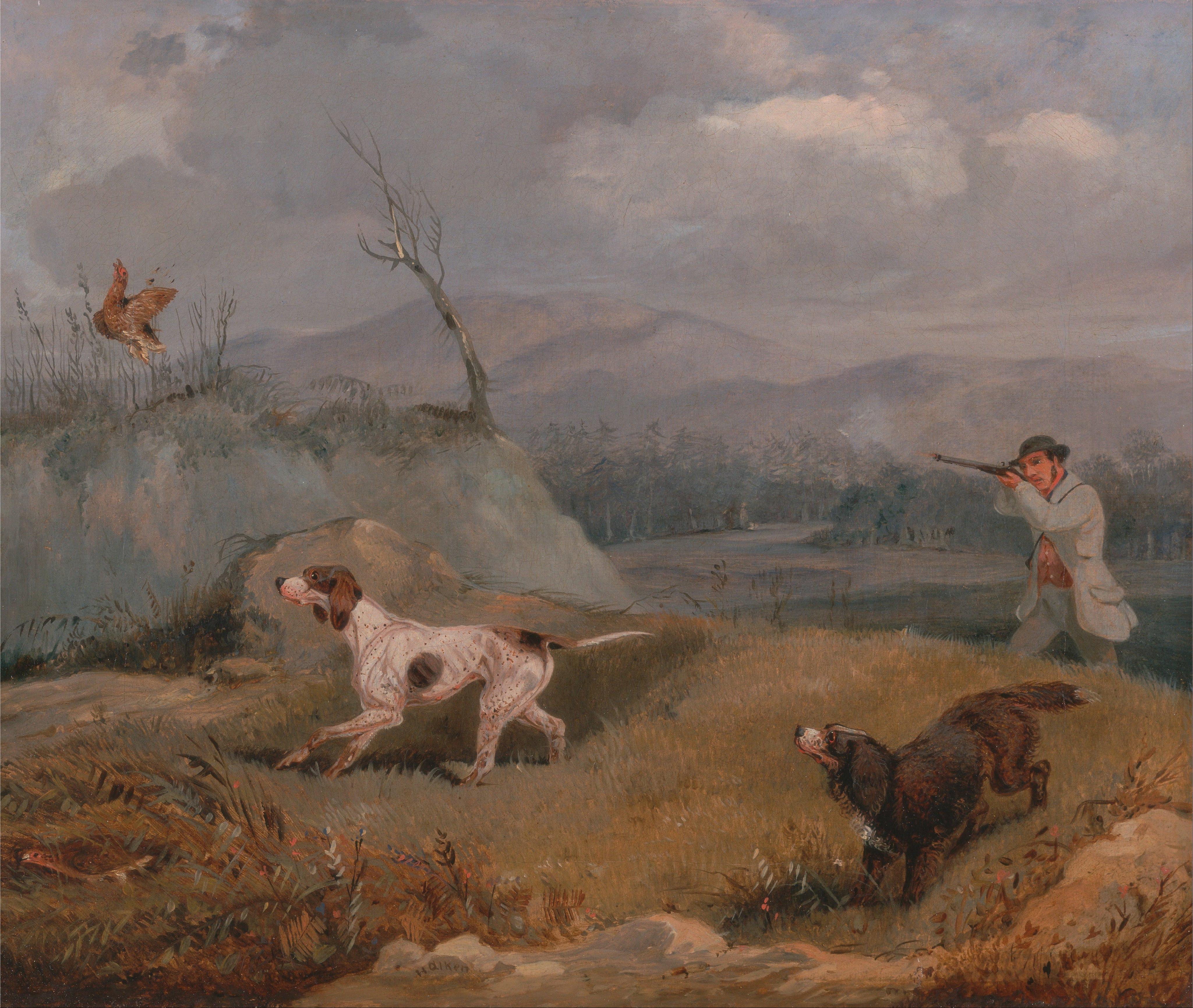 Grouse Hunting Dog Names