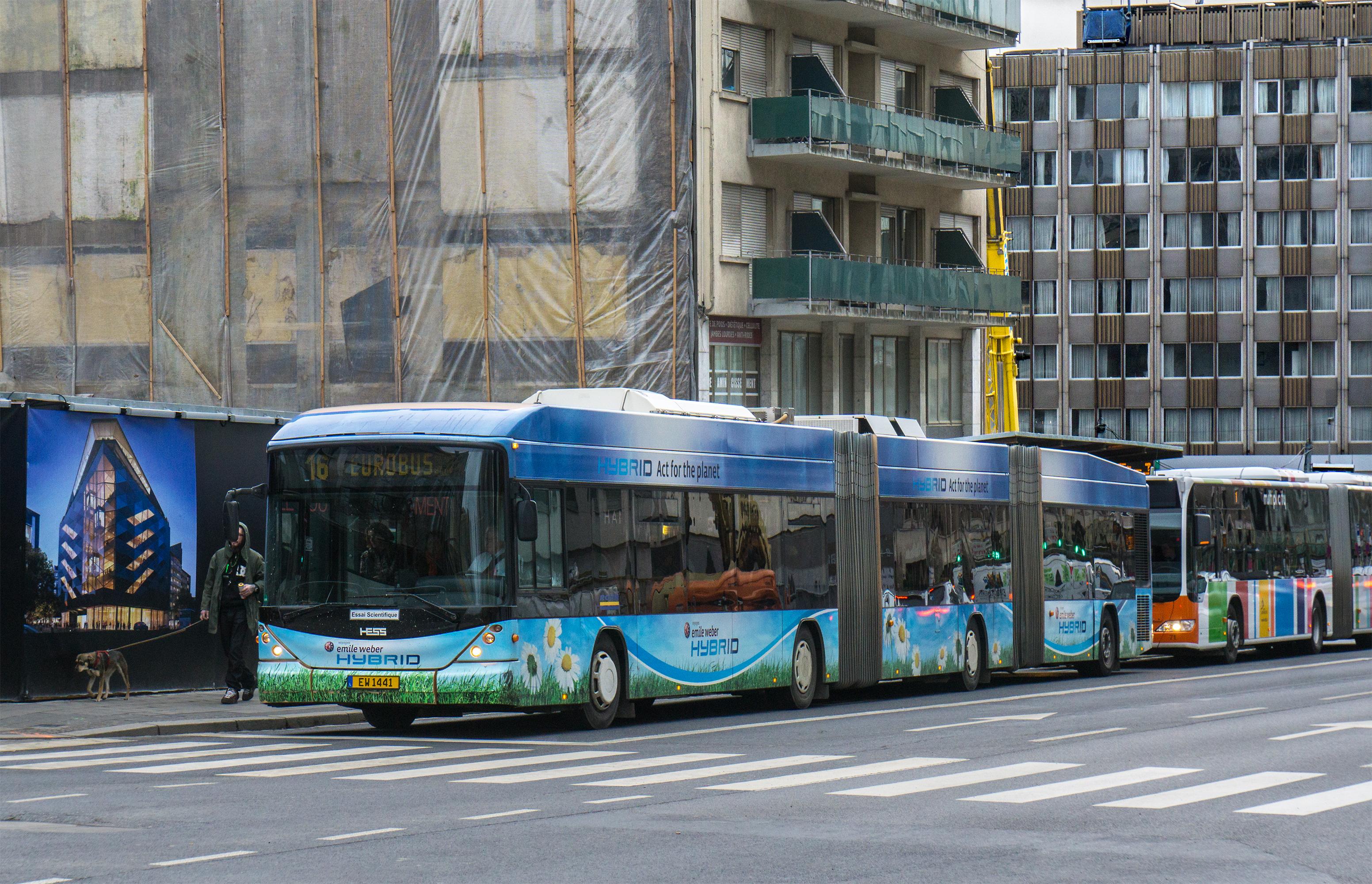 Stater Tram –