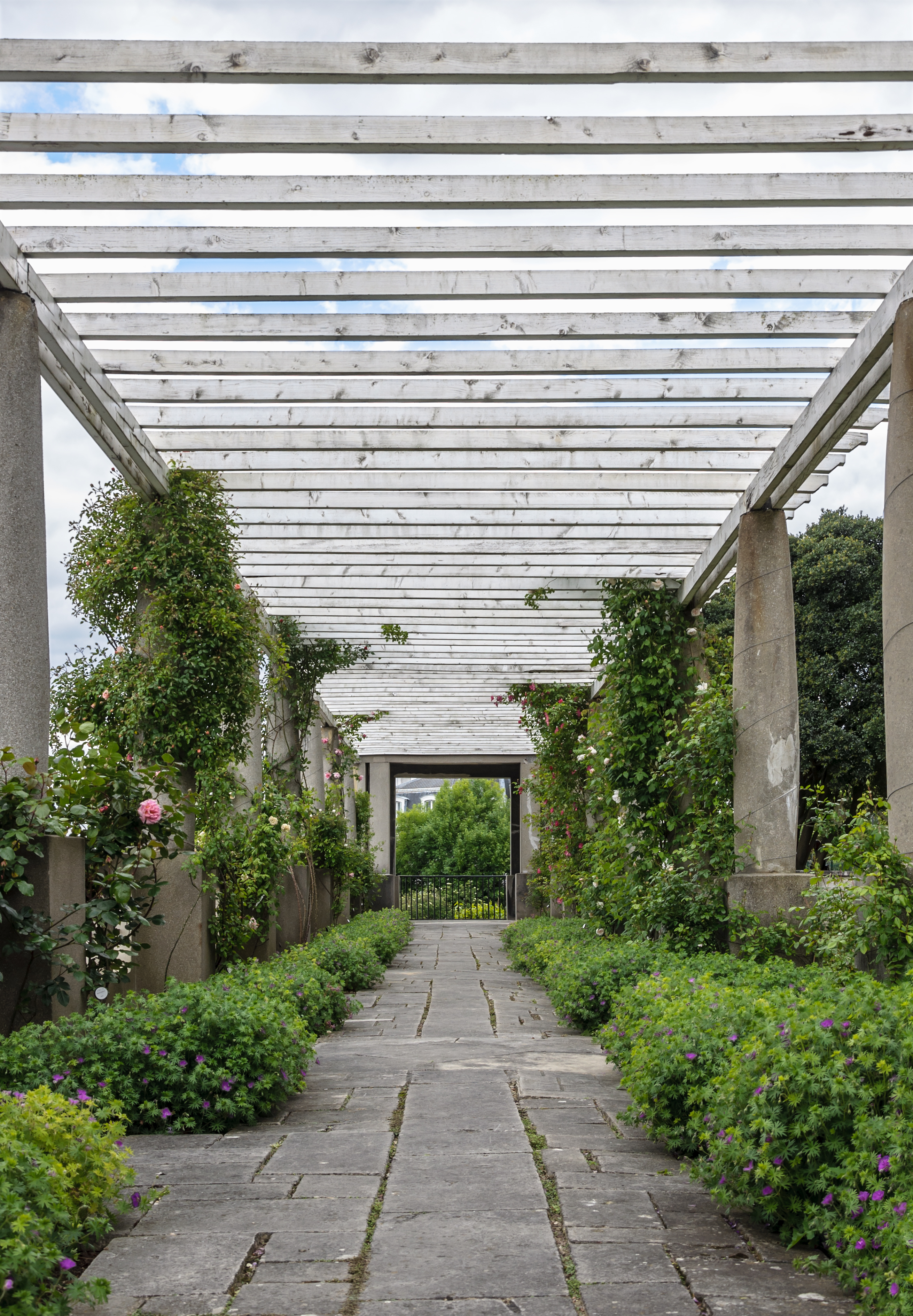 Pergola jardin carrefour samling av de senaste for Pergolas baratas carrefour