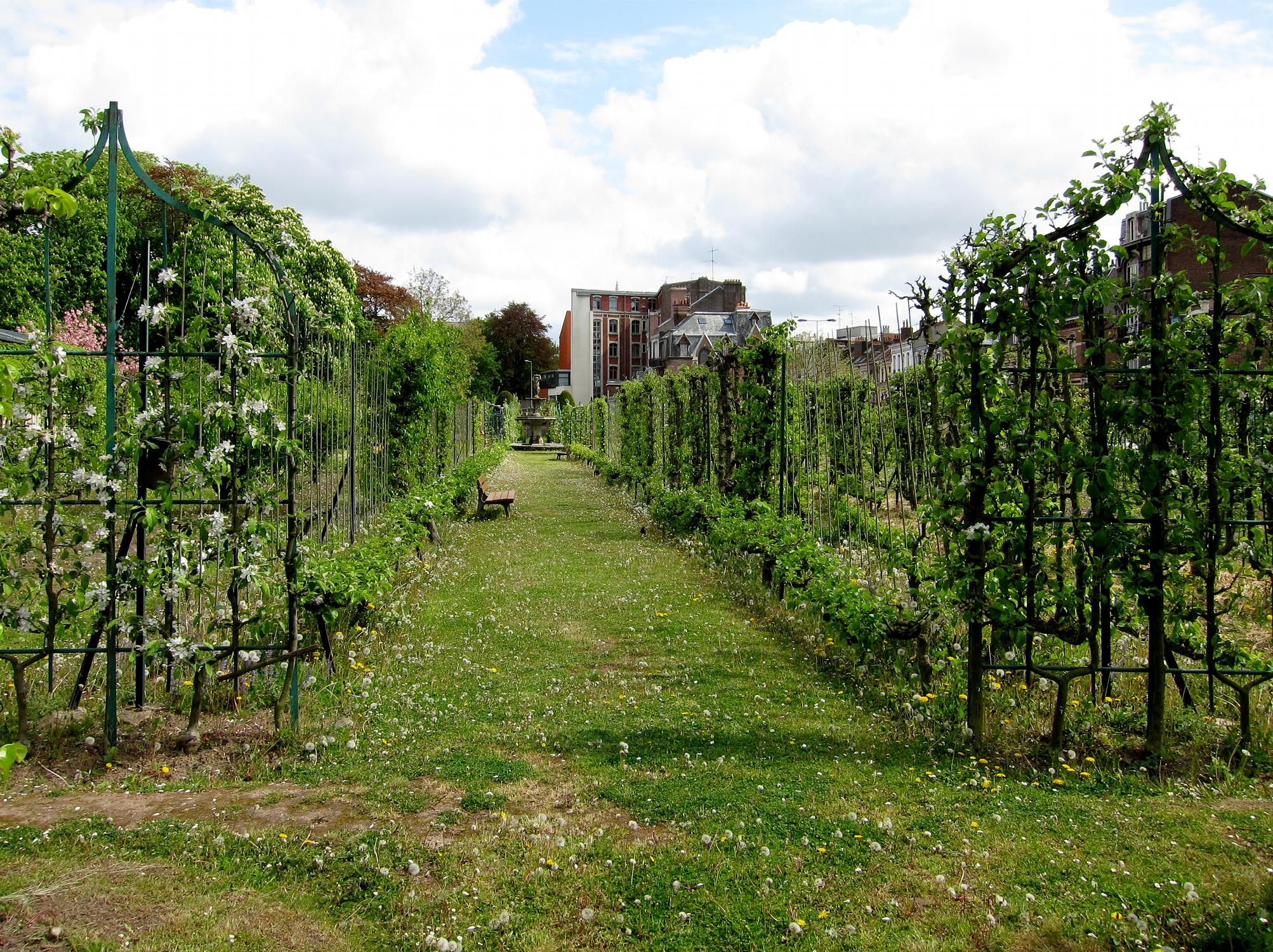 File lille vauban jardin arboriculture jpg wikimedia commons for Jardin vauban lille