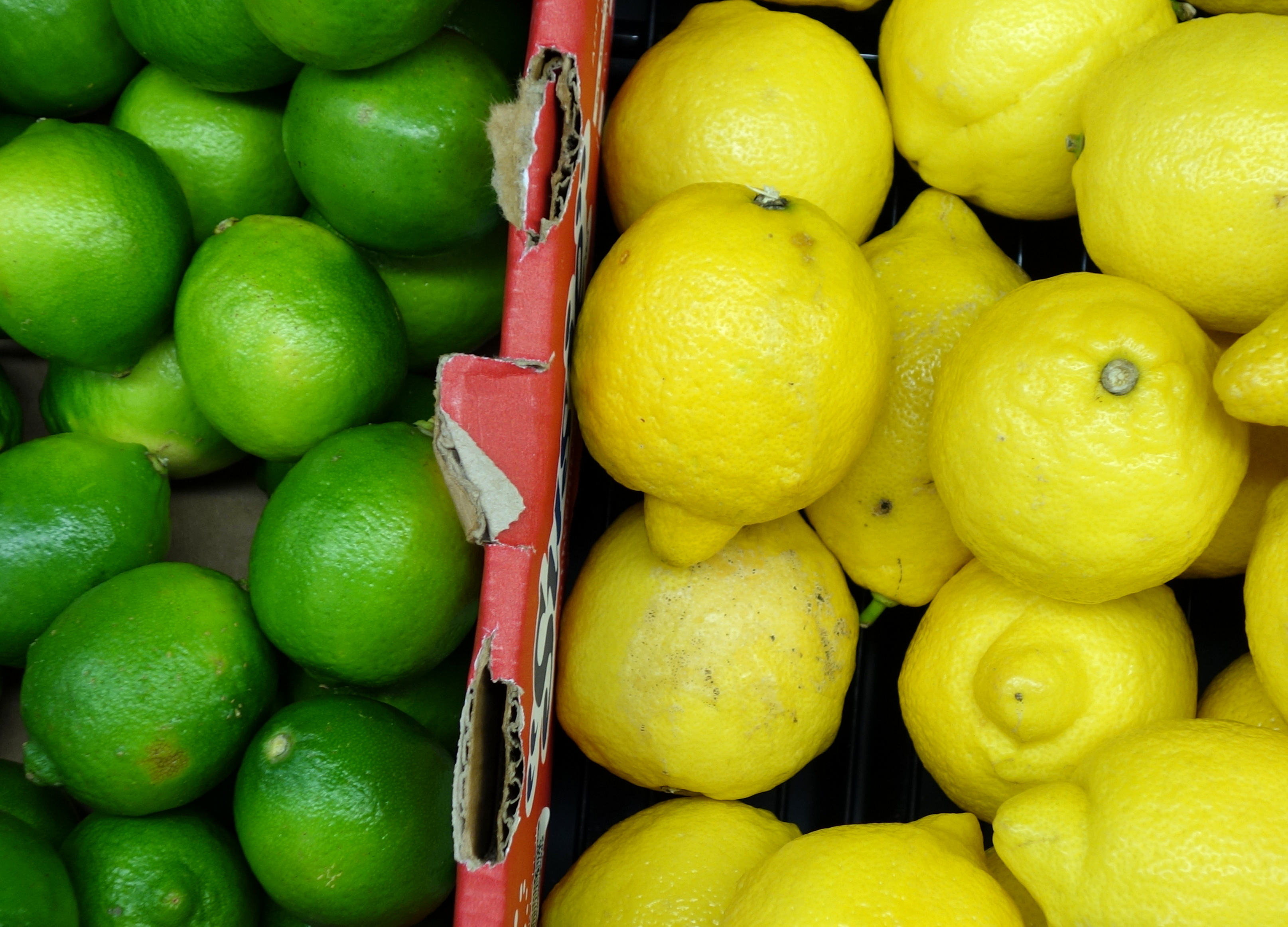 File:Limes & Lemons - DSC06057.JPG - Wikimedia Commons