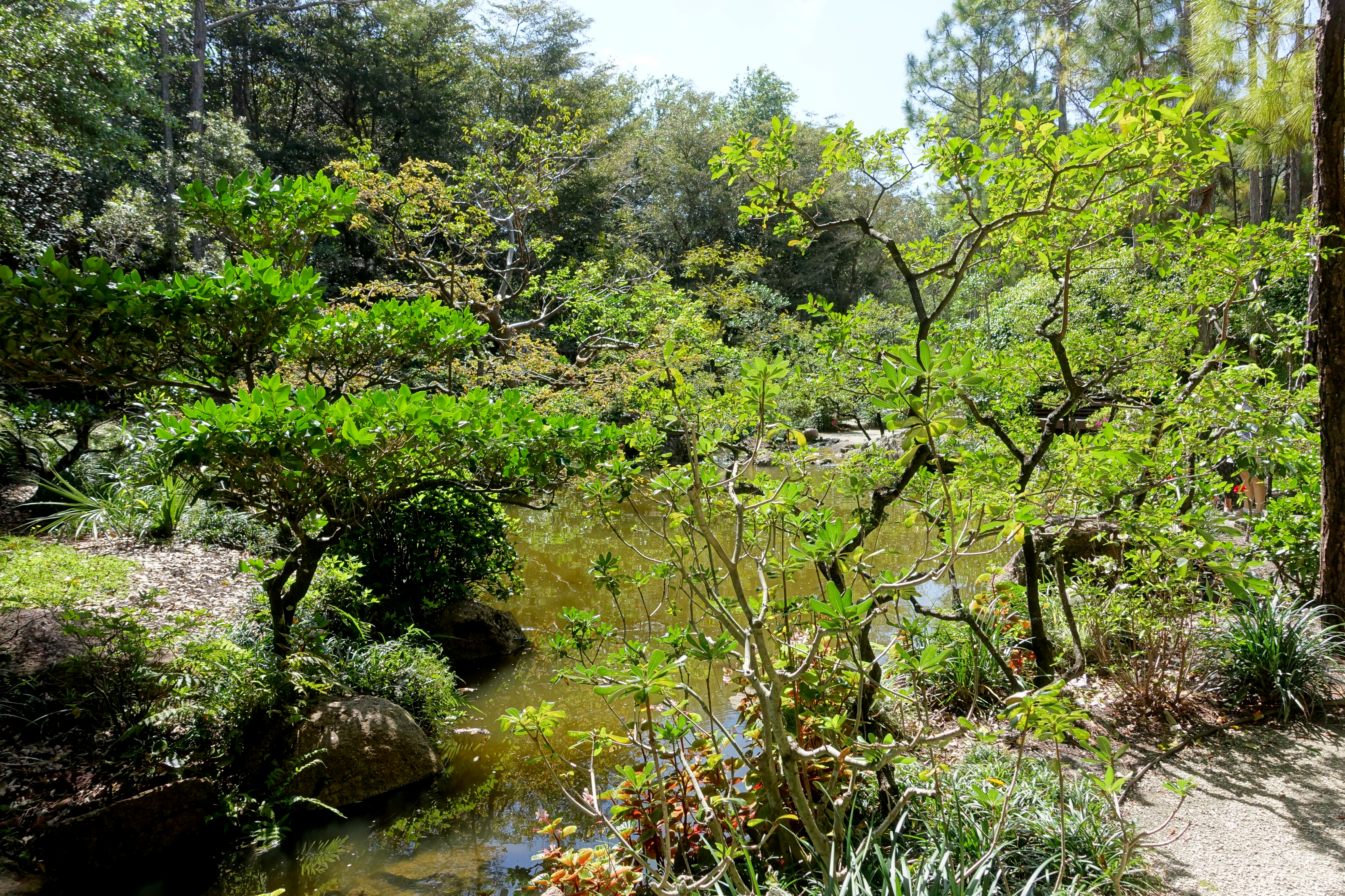 File:Modern Romantic Garden - Morikami Museum and Japanese Gardens ...