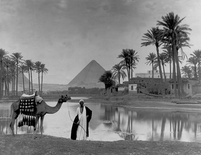 Man with Camel and Pyramids