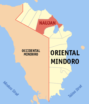 Map of Oriental Mindoro showing the location of Naujan