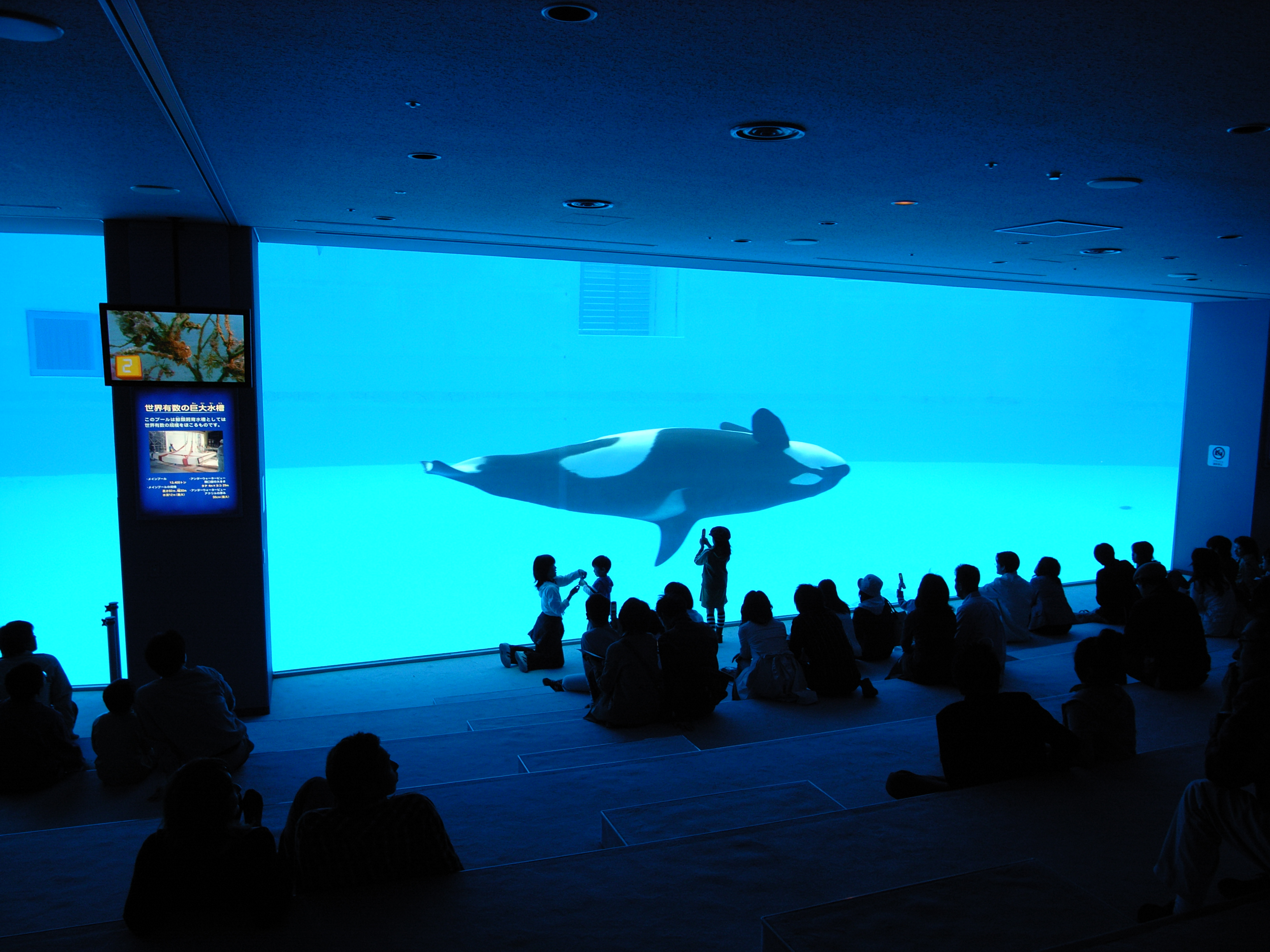 File:Port of Nagoya Public Aquarium.jpg