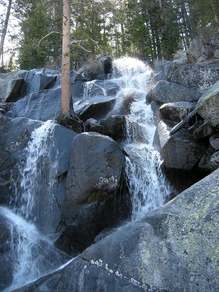 Quaking Aspen Falls Wikipedia