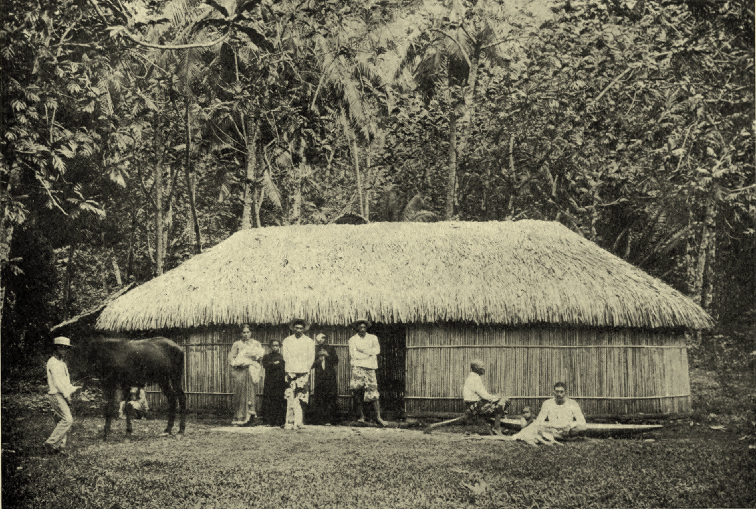 File:Tahitian Bamboo House, c. 1902.jpg - Wikimedia Commons