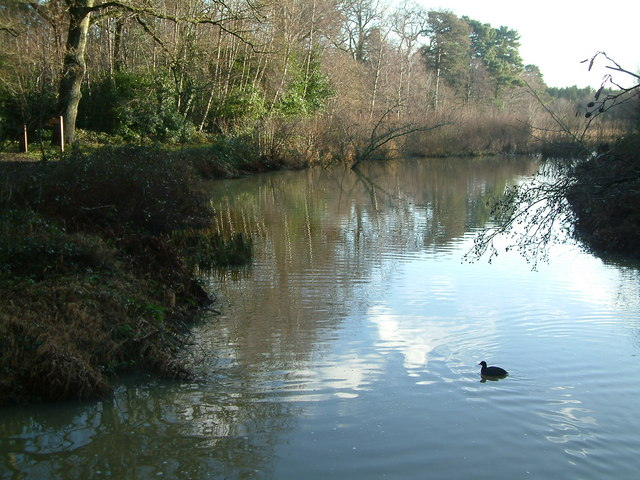The Lake at Stover Country Park - geograph.org.uk - 409238