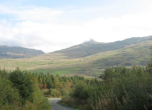 The Signs of Autumn in Beddgelert Forest - geograph.org.uk - 257734