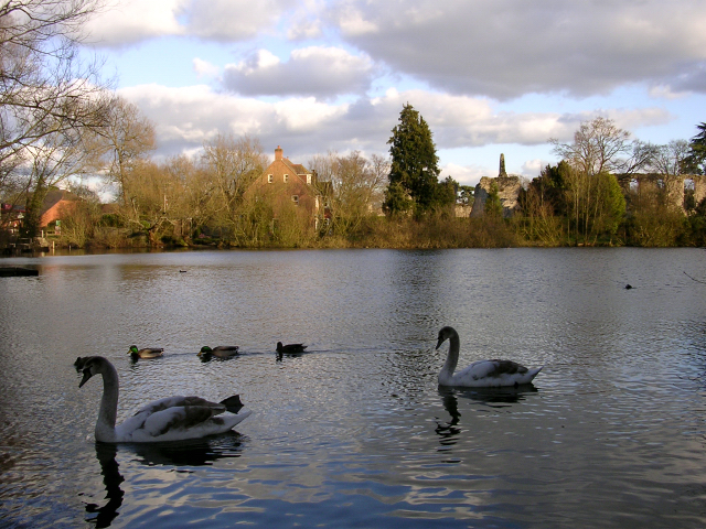 The millpond and Bishop's Palace Ruins, Bishop's Waltham - geograph.org.uk - 25006