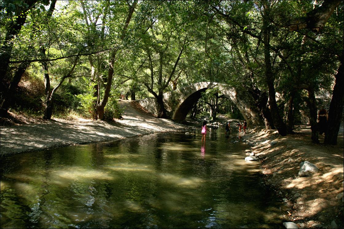 Paphos forest bridge
