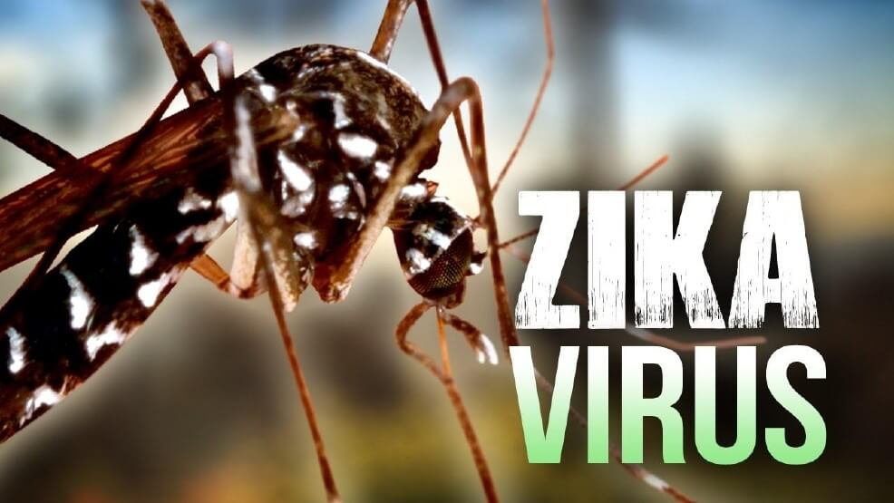 Image result for what is zika